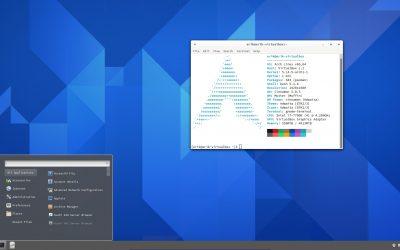31 Create Cinnamon iso – no ArcoLinux repo – no Chaotics repo – just Arch Linux repo and drivers